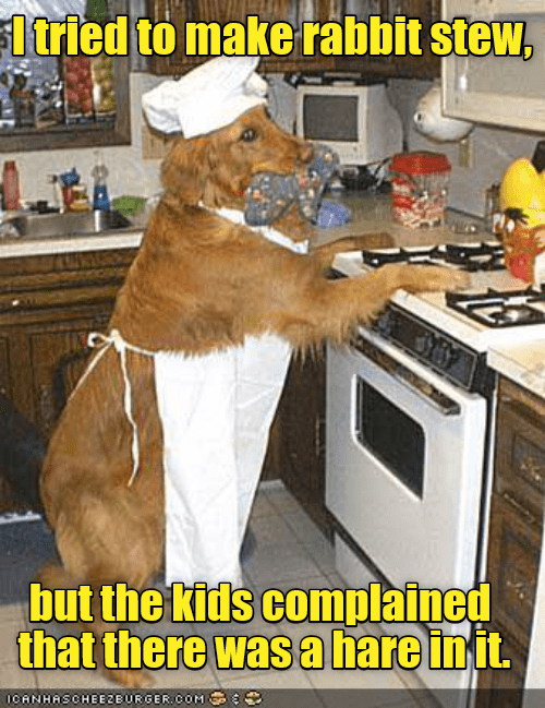 Funny picture of a dog frying up something in the kitchen with a dad joke captioned about rabbit stew.