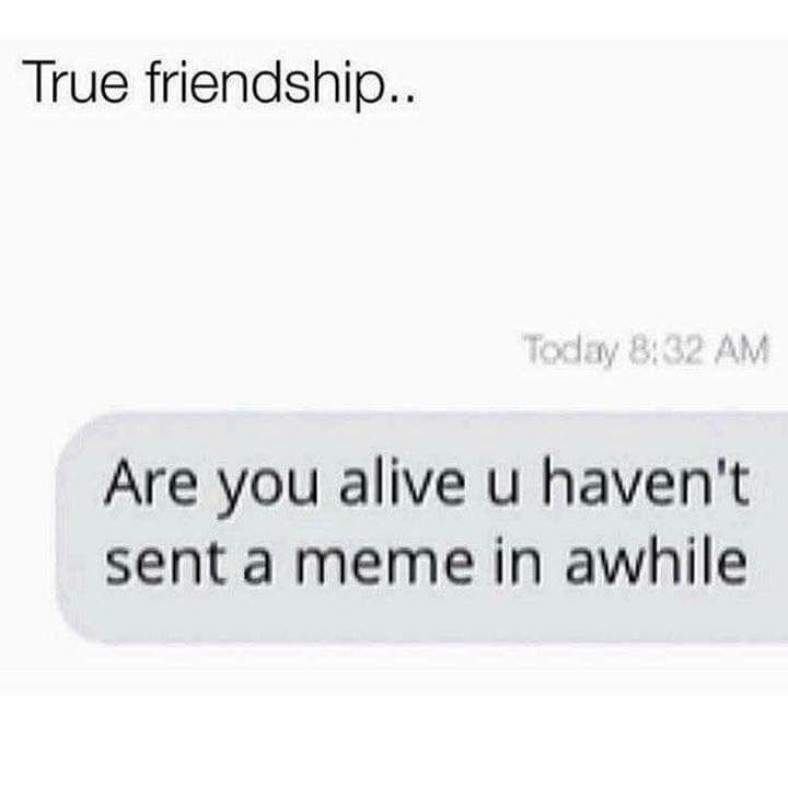 Memes texting