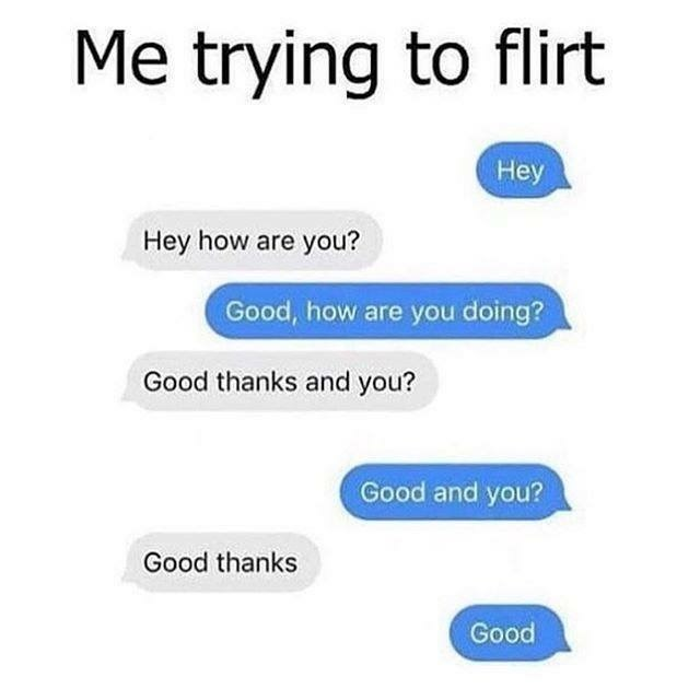 dating meme - Text - Me trying to flirt Hey Hey how are you? Good, how are you doing? Good thanks and you? Good and you? Good thanks Good