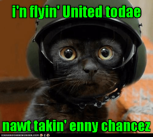 cat united taking not caption today chances flying - 9027467264