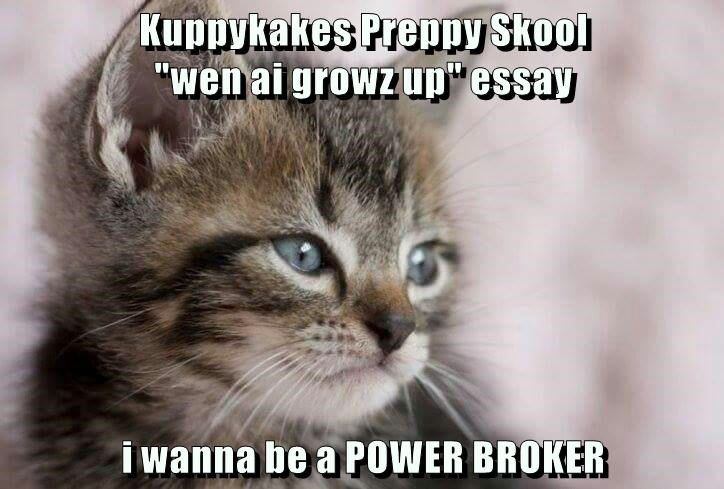 Cute and funny cat picture of a cat meme about prep school