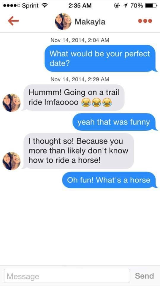 tinder messages What would be your perfect date? Nov 14, 2014, 2:29 AM Hummm! Going on a trail ride Imfaoooo yeah that was funny I thought so! Because you more than likely don't know how to ride a horse! Oh fun! What's a horse Send Message