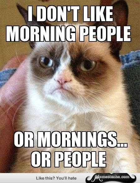 Tardar Sauce in a Grumpy cat meme about not liking mornings or people or both.
