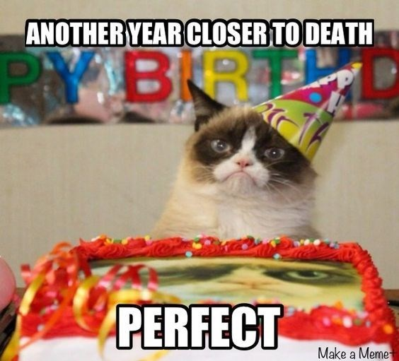 Grumpy cat meme about a birthday being great because it is 1 year closer to death.