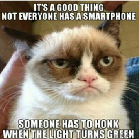 Grumpy cat meme of Tardar Sauce saying something snarky about people using their phones while driving.