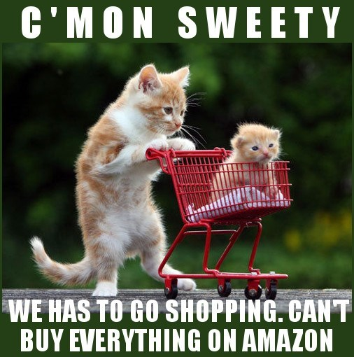 Cat meme of kitten and momma cat pushing shopping cart and mom explaining that they can not buy everything on Amazon.