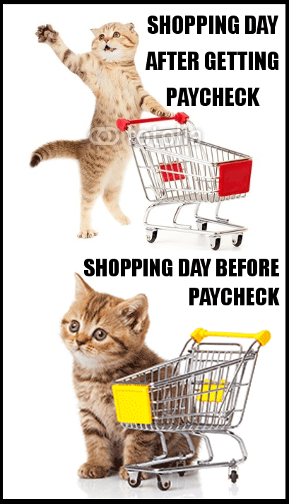 cat meme of shopping on day before paycheck vs day after paycheck.