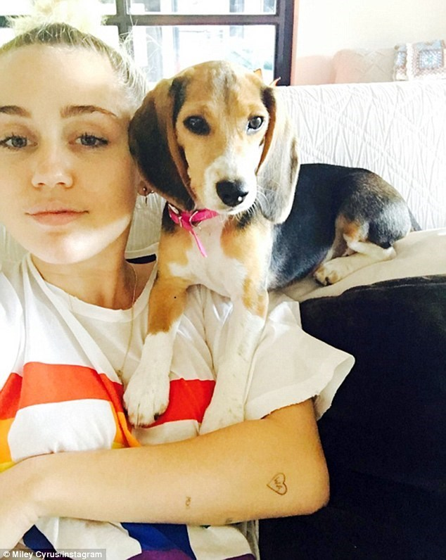 Miley Cyrus hanging out with her dog Barbie.