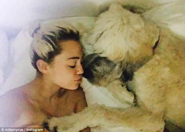 Miley Cyrus sleeping in bed with her dog Dora.