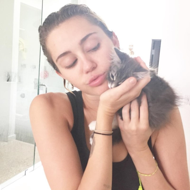 Miley Cyrus with a kitten named Lilo