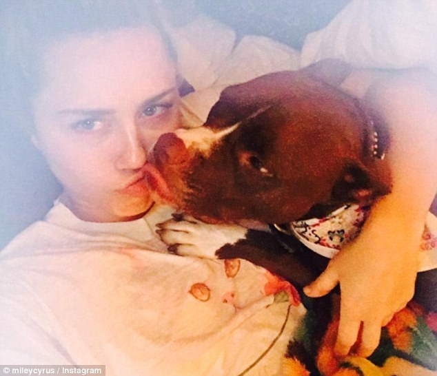 Miley Cyrus and Tani her dog chilling.