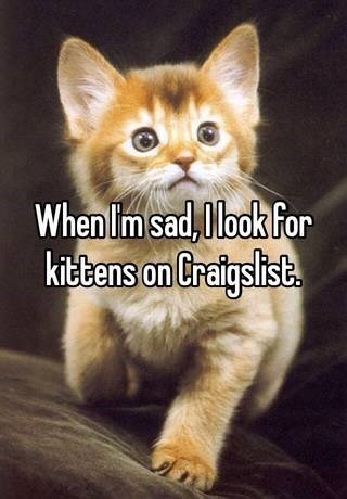 Funny Whisper comment about someone who claims they go on Craigslist and look at kitten pictures when they are sad.