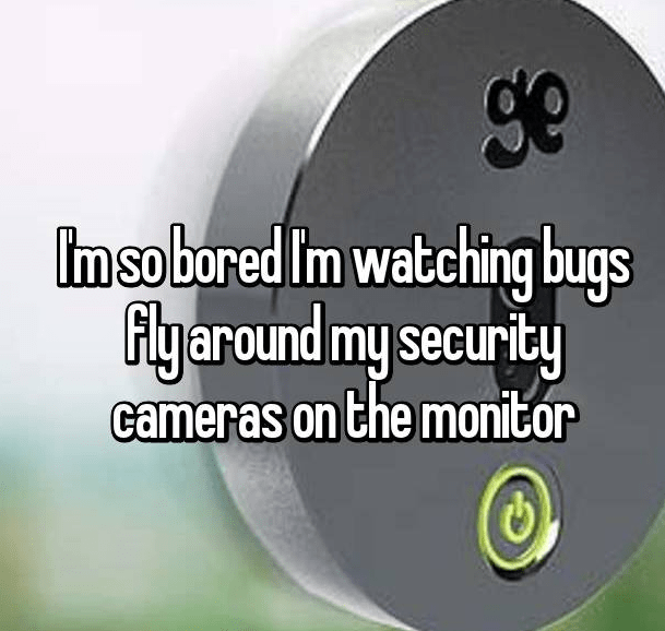 Product - ge Imsobored Im watching bugs Flyaround my security cameras on the monitor
