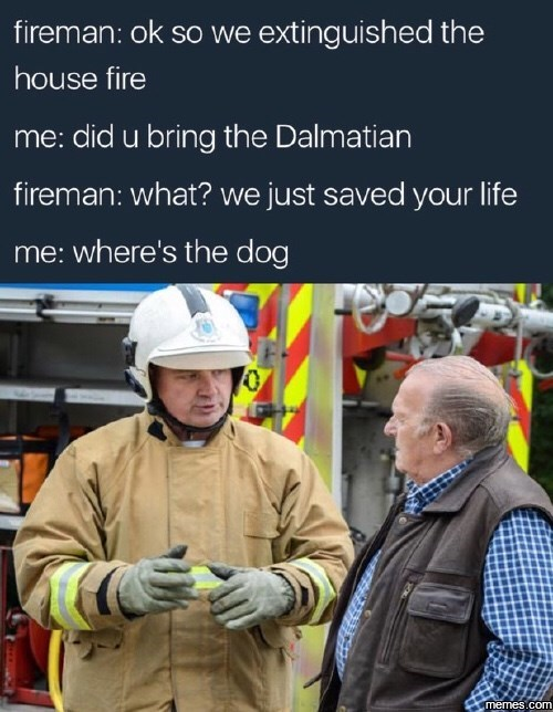 A firefighter saves a man from a burning building and puts out fire. All the man wants to see is the dalmatian (dog).