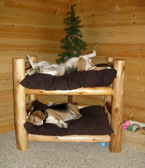 Do it yourself dog bunk bed