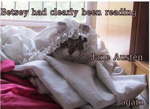 Cat been reading Jane Austin again.