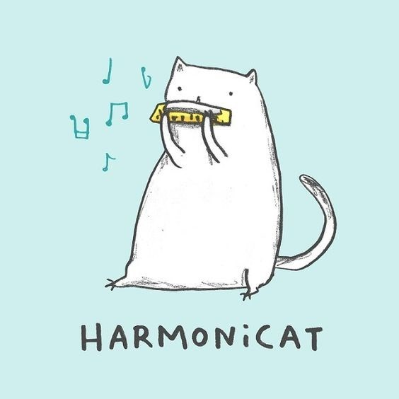 Drawing of a cat playing a harmonica groan pun as playing the 'harmonicat'.
