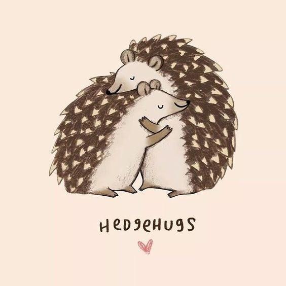 Funny pun of hedgehogs hugging punned at 'hedgehugs'.