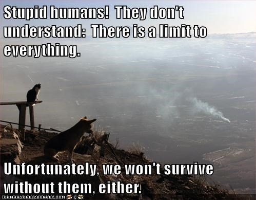 Funny meme of a dog and a cat over looking a valley and saying how the humans are stupid, implying that the animals own this land.