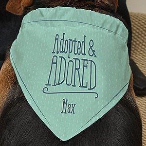 Dog bandana with his name on it.