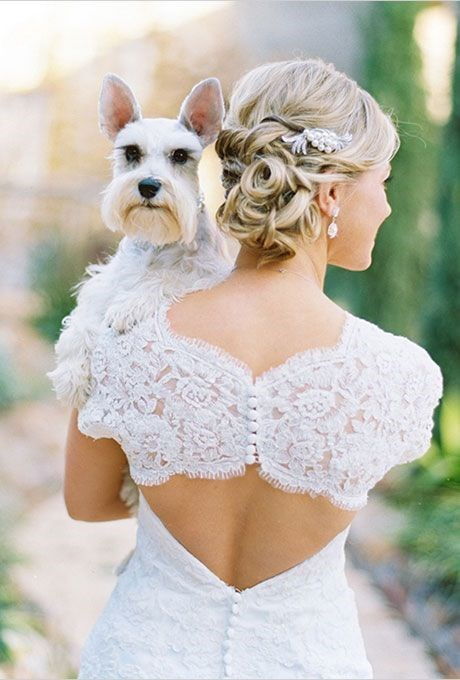 Bride carrying a dog.