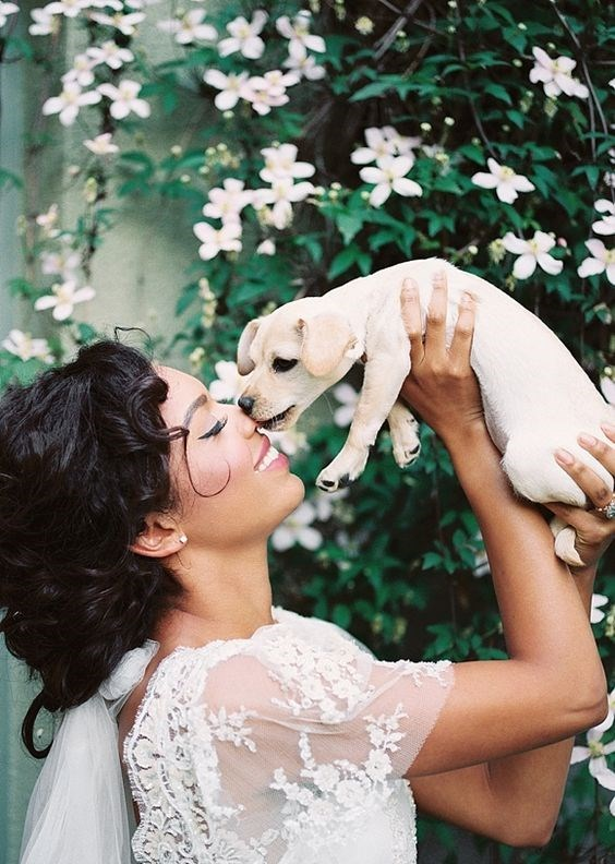 Bride holding up a cute puppy