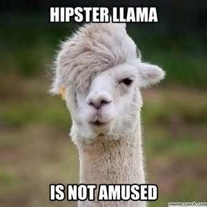 Funny picture of a hipster llama captioned that he is not amused.