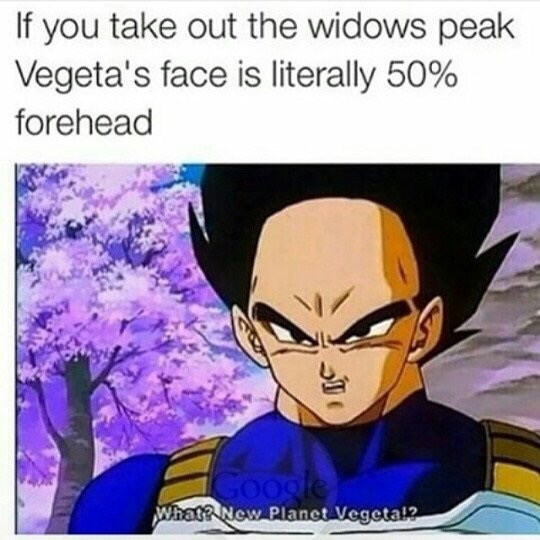 Anime - If you take out the widows peak Vegeta's face is literally 50% forehead Google What? New Planet Vegeta?