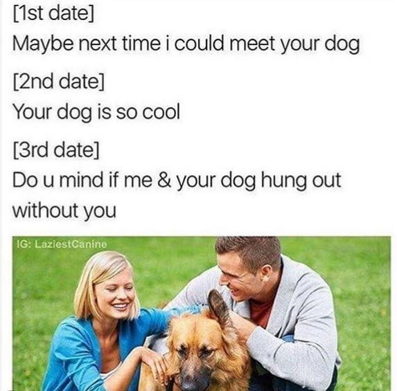 Man and woman are talking in a park and petting dog. Descriptions of dates that lead to eventually one of them wanting to hang out with the dog sans the other.