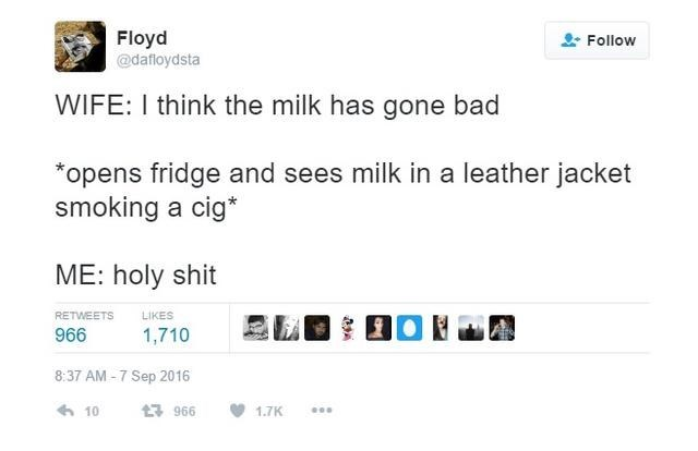 Text - Floyd @dafloydsta Follow WIFE: I think the milk has gone bad opens fridge and sees milk in a leather jacket smoking a cig* ME: holy shit RETWEETS LIKES 966 1,710 8:37 AM -7 Sep 2016 10 t3966 1.7K
