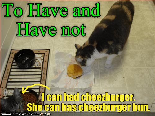 Cheezburger Image 9029568256