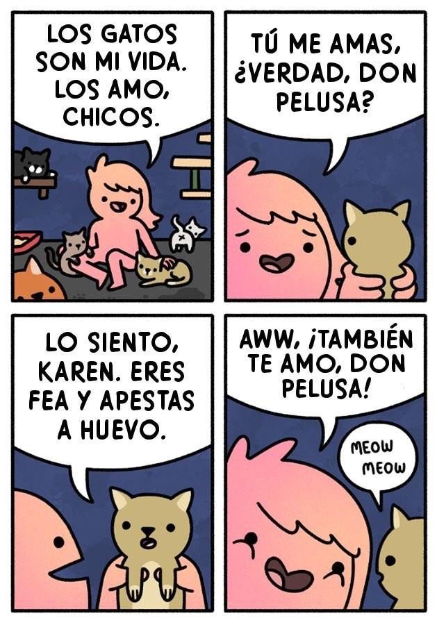 si los gatos hablaran