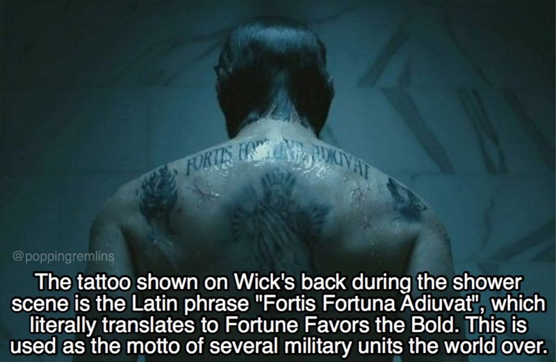 """Text - FORTIS HNON4IAT @poppingremlins The tattoo shown on Wick's back during the shower scene is the Latin phrase """"Fortis Fortuna Adiuvat"""", which literally translates to Fortune Favors the Bold. This is used as the motto of several military units the world over."""