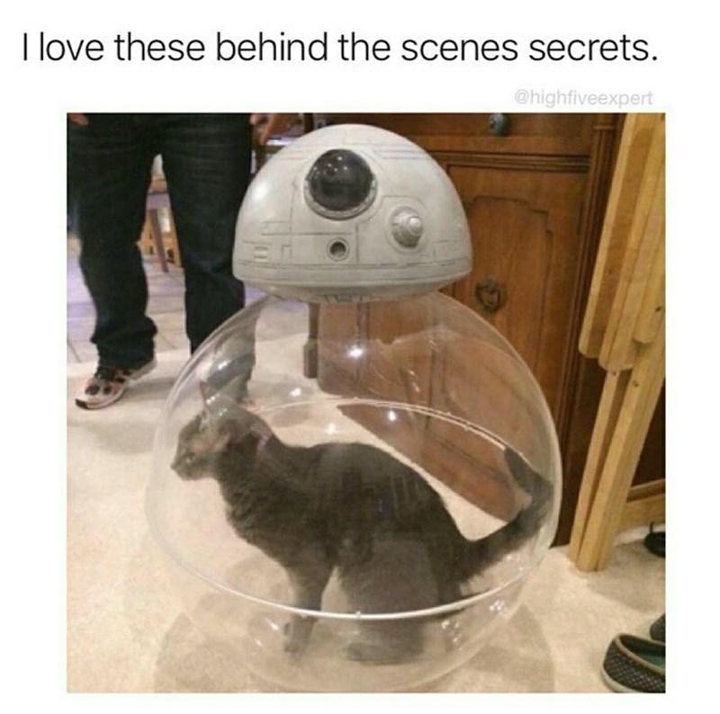 Helmet - I love these behind the scenes secrets. @highfiveexpert