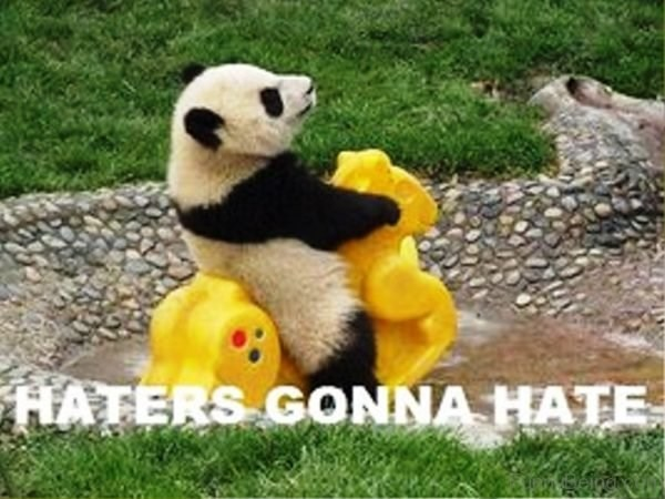 Panda - HATERS GONNA HATE