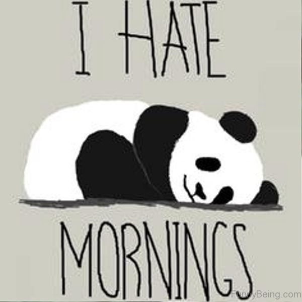 Panda - I HATE MORNINGS DyBeing.com