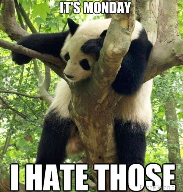 Panda - ITS MONDAY THATE THOSE nyBeng.c