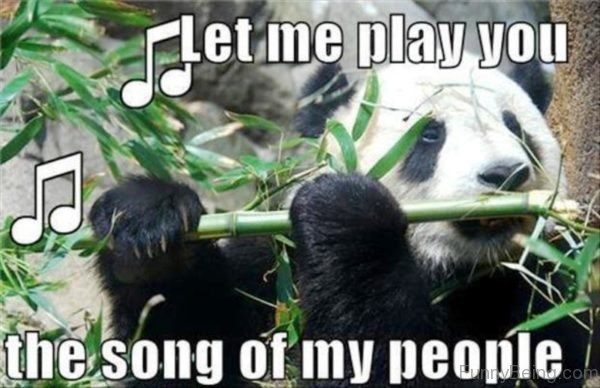 Panda - Letme play vou the song of my people Midhcom
