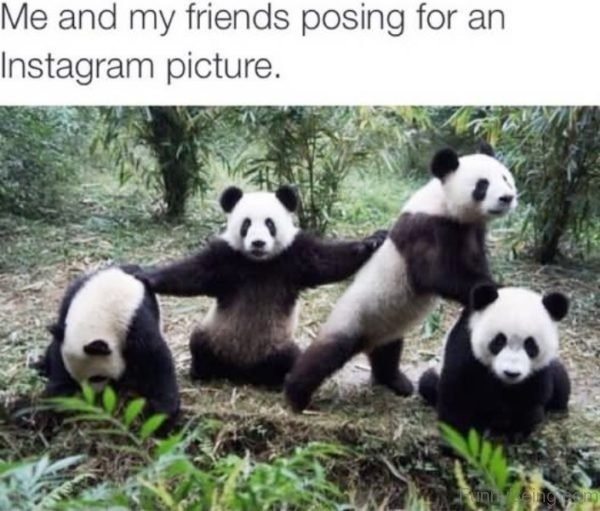 Panda - Me and my friends posing for an Instagram picture.