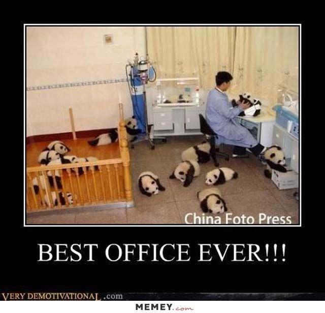 Photo caption - China Foto Press BEST OFFICE EVER!!! VERY DEMOTIVATIONAL.com MEMEY.com