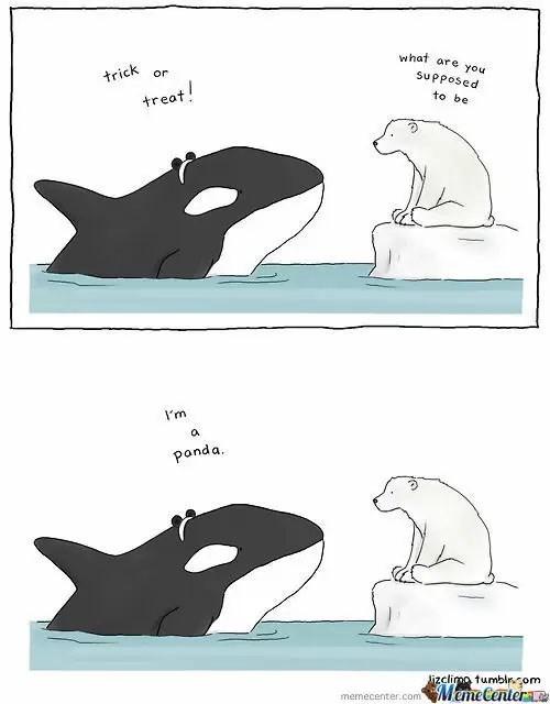 Marine mammal - what are you trick or Supposed treat! to be I'm a panda lizclimo tumblr.com Meme Centera memecenter.com