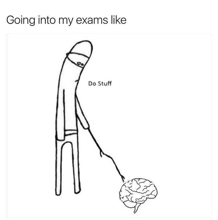 Going into exams like: cartoon of person poking brain and telling it to do stuff.