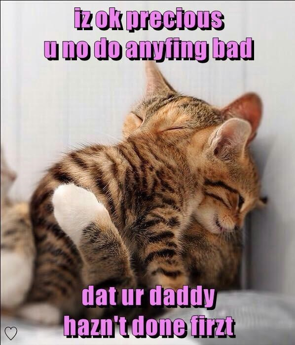 cat meme - Cat - izok precious uno do any fing bad dat ur daddy hazntdone firzt