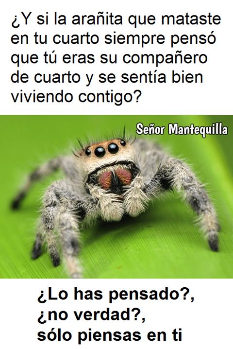 matar aranas