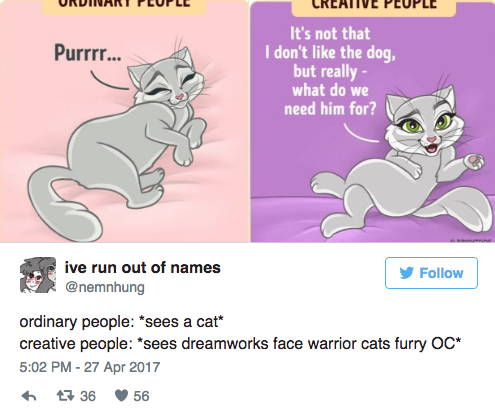"""Text - It's not that I don't like the dog, but really- Purrrr.. what do we need him for? ive run out of names Follow @nemnhung ordinary people: """"sees a cat creative people: """"sees dreamworks face warrior cats furry OC* 5:02 PM-27 Apr 2017 36 56"""