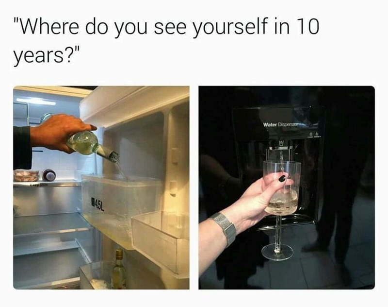 Where do you see yourself in 5 years? Filling water area of refrigerator with wine so that you can get wine out of the fridge automatically.