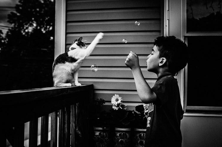 boy and hit pet pics - Black - A