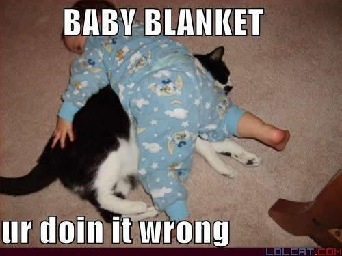 Photo caption - BABY BLANKET ur doin it wrong LOLCAT.COM