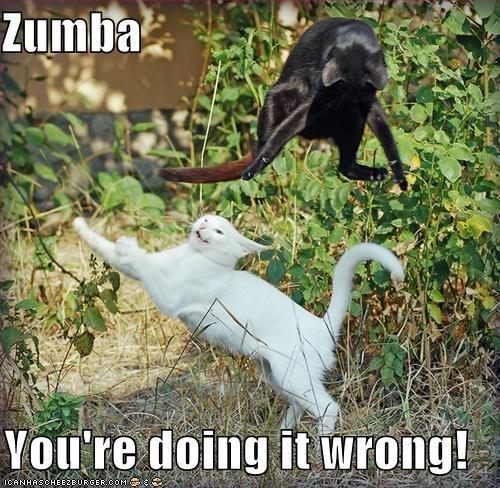 Photo caption - Zumba Vou're doing it wrong! ICANHASCHEE2EURGER COM