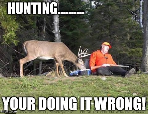 Wildlife - HUNTING. YOUR DOING IT WRONG! imgflip.comtnce 2013-02-24, 560x375px pie. LCF V6 (C) 2013 ATA Walerian Waawski